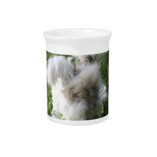 "Pitcher - English Angora Rabbit ""Bradley"""