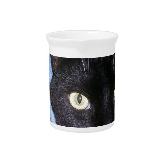 Pitcher: Funny Cat wrapped in Blankets Beverage Pitchers