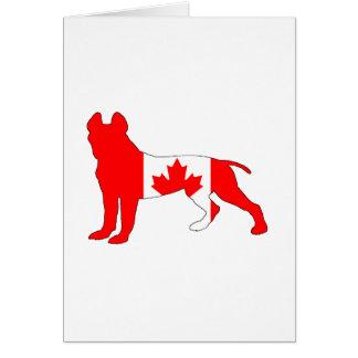 Pitt Bull Terrier Card