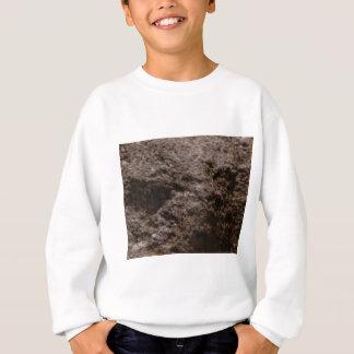 pitted rock texture sweatshirt
