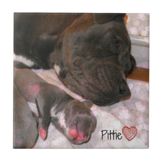 Pittie Love Tile