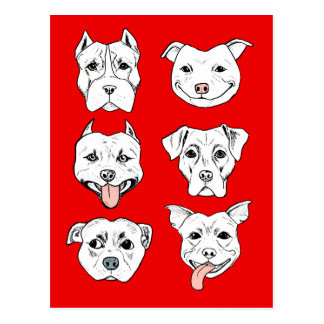 """Pittie Pittie Please!"" Pit Bull Dog Faces Postcard"