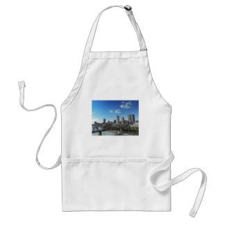 Pittsburgh Skyline from Liberty Street Bridge Standard Apron