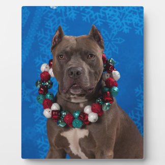 Pitty Christmas Plaque