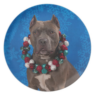 Pitty Christmas Plate