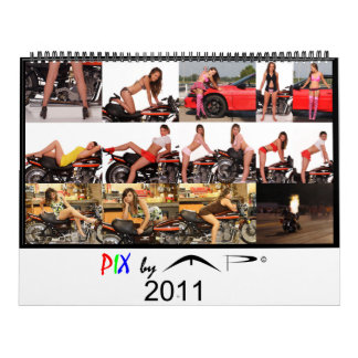 PIX by MP 2011 Calendar