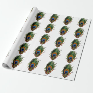PixDezines peacock feather/diy background Wrapping Paper