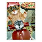 pizza cat - cat - pizza delivery postcard