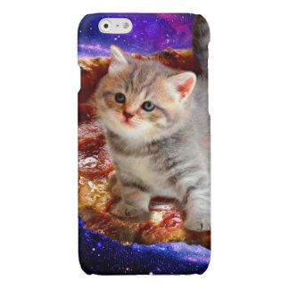 pizza cat - cute cats - kitty - kittens