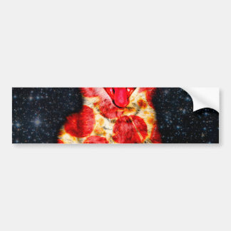 pizza cat - kitty - pussycat bumper sticker