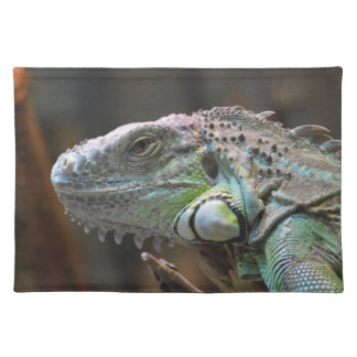 Placemate with head of colourful Iguana lizard Place Mats