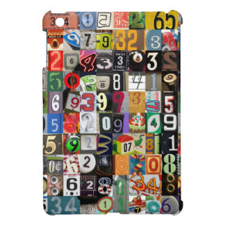 Places of Pi iPad Mini Cover