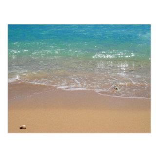 Plage tropicale - Waikiki, Oahu, Hawaï Cartes Postales