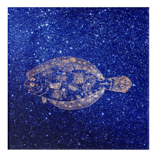 Plaice Fish Sea Ocean Blue Navy Rose Gold Acrylic Wall Art
