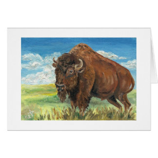 Plains Bull Buffalo American Bison Wildlife Art Card