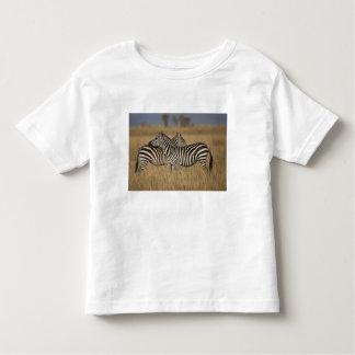 Plains Zebra (Equus quagga) pair grooming, Masai T Shirts