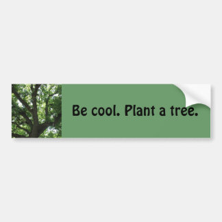 """Plant A Tree"" Bumper Sticker"