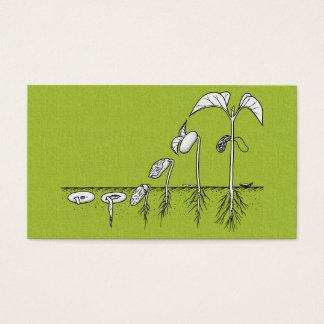 Plant Germination Illustration Business Card