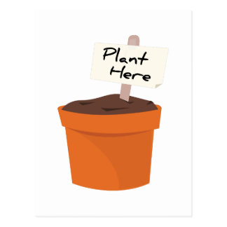 Plant Here Postcards