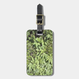 Plant leaf bag tag