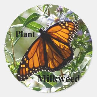 Plant Milkweed Classic Round Sticker