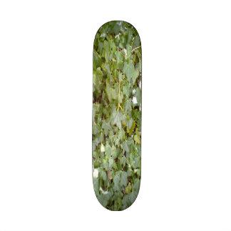 Plant Photo Custom Skateboard