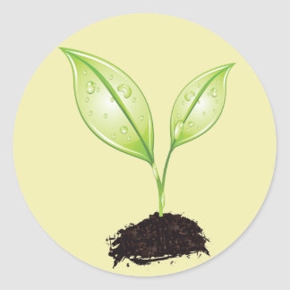 Plant ~ Seedling Green Earth Leaf & Root Seed Classic Round Sticker