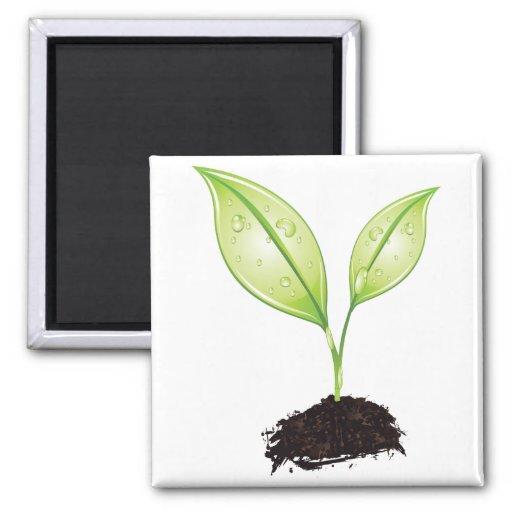 Plant ~ Seedling Green Earth Leaf & Root Seed Fridge Magnet
