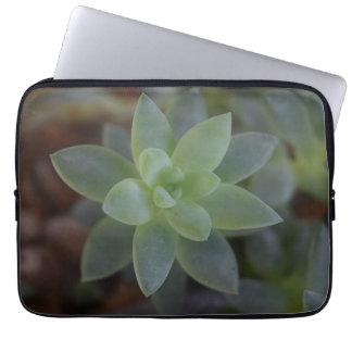 Plant Succulent Laptop Case