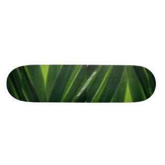 Plant Sunny Leaves Skate Deck