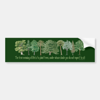 Plant Trees - Tree Lover, Hugger Bumper Sticker