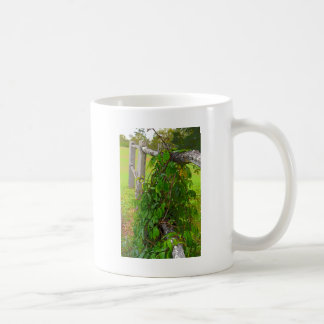 PLANT VINE RURAL QUEENSLAND AUSTRALIA COFFEE MUG