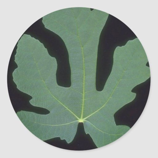 Plant Whole Fig Round Stickers