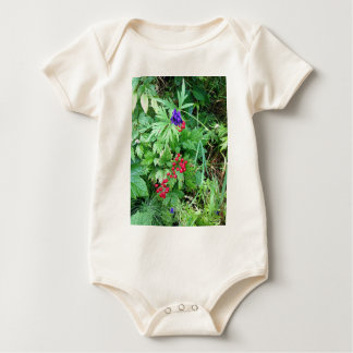 Plants at Pioneer Falls Butte Alaska Baby Bodysuit