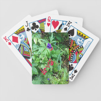 Plants at Pioneer Falls Butte Alaska Bicycle Playing Cards