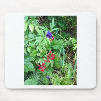 Plants at Pioneer Falls Butte Alaska Mouse Pad