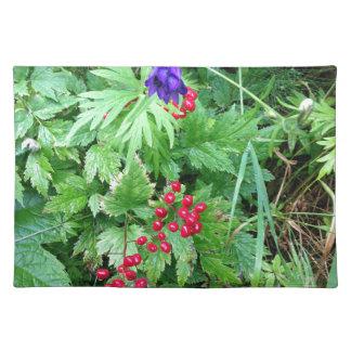 Plants at Pioneer Falls Butte Alaska Placemat