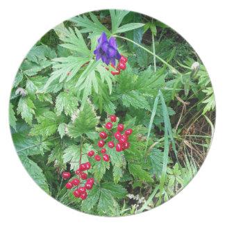 Plants at Pioneer Falls Butte Alaska Plate