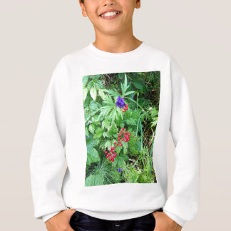 Plants at Pioneer Falls Butte Alaska Sweatshirt