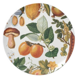 Plants Foods - Plates For Celebrations