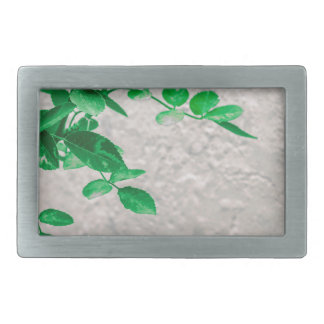 Plants over Wall Photo Belt Buckles