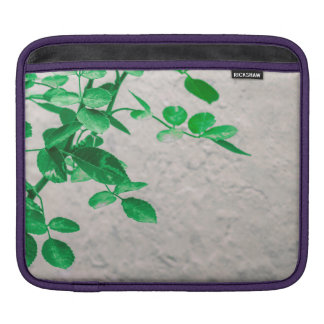 Plants over Wall Photo iPad Sleeve