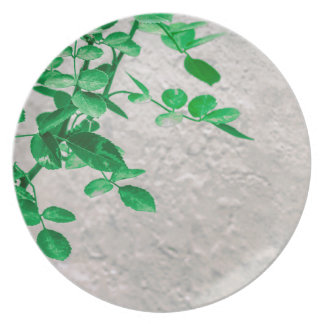 Plants over Wall Photo Plates