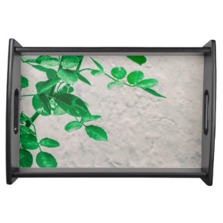 Plants over Wall Photo Serving Tray