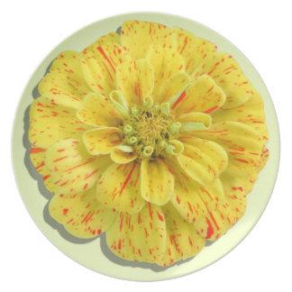 Plate - Candy Stripe Zinnia
