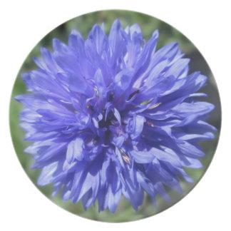 Plate - Cornflower Blue Bachelor's Button