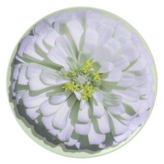Plate - Lemony White Zinnia