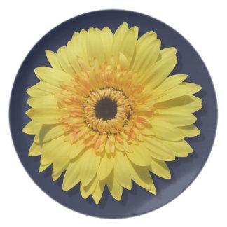 Plate - Lemorange Lollipop Daisy