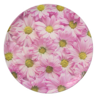 Plate - Pink Gerbera Daisies
