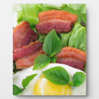 Plate with egg yolk, fried bacon and herbs plaque